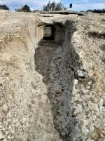 Archeo BIKE in Trexenta